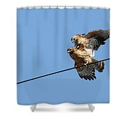 Love Is In The Air Shower Curtain by Mircea Costina Photography
