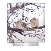 Love Is In The Air - Mourning Dove Couple Shower Curtain