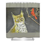 Love My Cats And Cards Shower Curtain
