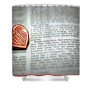 Love Never Fails Shower Curtain