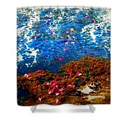 Love On A Wave Shower Curtain