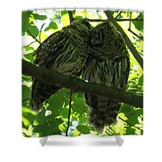 Love Owls Shower Curtain