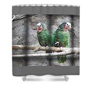 Love Parrots Shower Curtain