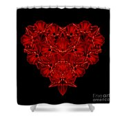 Love Red Floral Heart Shower Curtain