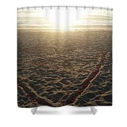 Love The Beach Shower Curtain