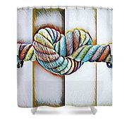 Love Wins/galle Shower Curtain