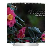 Love Your Enemies Shower Curtain
