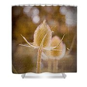 Loveletter Shower Curtain