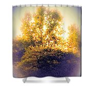 Lovely As A Summer Day Shower Curtain