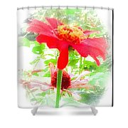 Lovely As A Summer's Dream Shower Curtain
