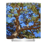 Lovely As A Tree Shower Curtain