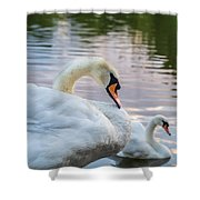 Lovely Couple Shower Curtain