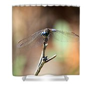 Lovely Dragonfly Shower Curtain
