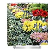 Lovely Flowers In Manito Park Conservatory Shower Curtain