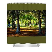 Lovely Grouping Of Trees In Mississippi Shower Curtain