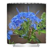 Lovely In Blue Shower Curtain