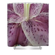 Lovely Lily Shower Curtain