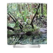Lovely Lithia Springs Shower Curtain