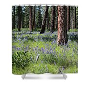 Lovely Lupine In The Mountains Shower Curtain
