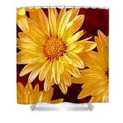 Lovely Mums Shower Curtain
