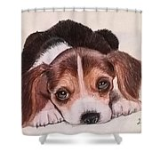 Lovely Pet Shower Curtain