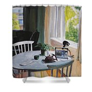 Lovely Small Apartment Shower Curtain