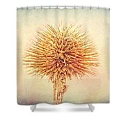 Lovely Spikes Shower Curtain