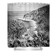 Lover's Cove Catalina Island Black And White Photo Shower Curtain