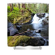 Lover's Lane Loop Five Shower Curtain