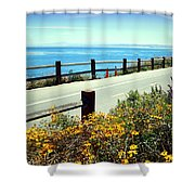 Lovers Point Walkway Shower Curtain