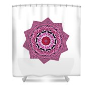 Loving Rose Mandala By Kaye Menner Shower Curtain