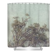 Loving The Trees Shower Curtain