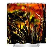 Loving The Warmth Shower Curtain