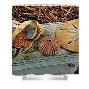Low-country Still-life Shower Curtain