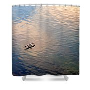 Low Flight Shower Curtain