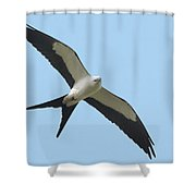 Low Flying Kite Shower Curtain