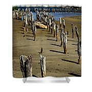 Low Tide #2 Shower Curtain