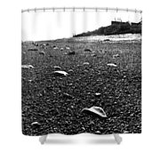 Low Tide At Linwood's House 26 Shower Curtain