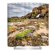 Low Tide At Saddle Rocks Shower Curtain