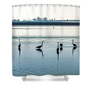 Low Tide Gathering Shower Curtain