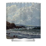 Low Tide, Hetherington's Cove, Grand Manan By Alfred Thompson Bricher Shower Curtain