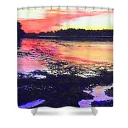 Low Tide On The Penobscot River Shower Curtain