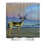 Lowell's Gazelle Shower Curtain
