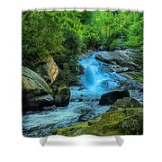 Lower Lynn Camp Falls Smoky Mountains Shower Curtain