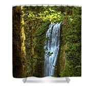 Lower Multanomah Falls, Oregon Shower Curtain