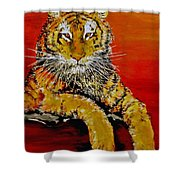 Lsu Tiger Shower Curtain