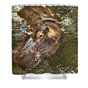 Lu The Homossasa Hippo I I Shower Curtain