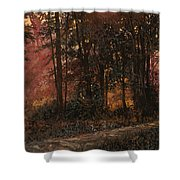 Luci Nel Bosco Shower Curtain