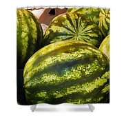 Lucious Watermelon Shower Curtain