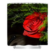 Lucius Red Rose Shower Curtain